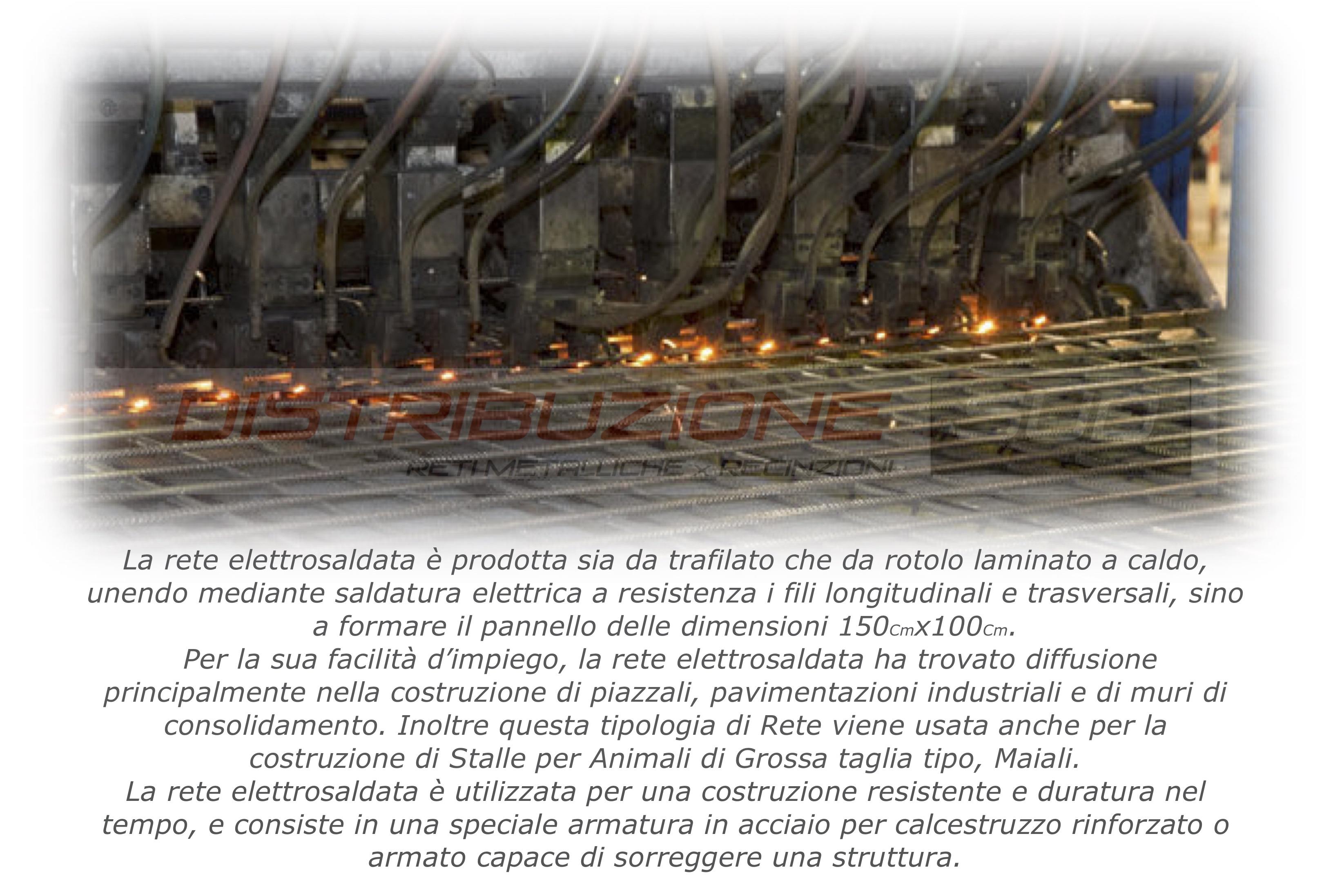 rete recinzione maiali